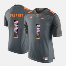 Tennessee Volunteers #1 Michael Palardy Grey College Football Jersey